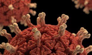 Hvad kan coronavirus betyde for dit job?